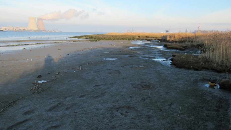 erosiemetingen-gs-zone-januari2015-foto-frank-wagemans