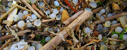 A scientific perspective on microplastics in nature and society
