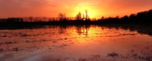 Natte natuur onmisbaar in strijd tegen gevolgen klimaatverandering