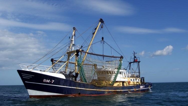 Noordzee wordt alleen schoner met hulp van vissers