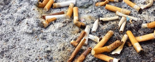 Cigarette butts are the single biggest source of ocean trash