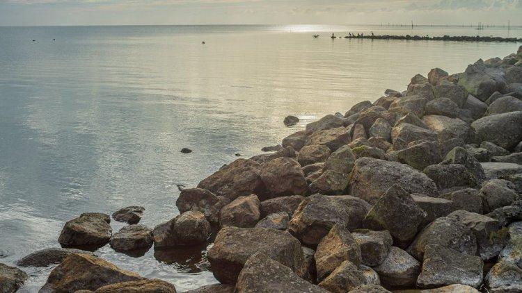 Zachte Waddendijk voor meer natuur