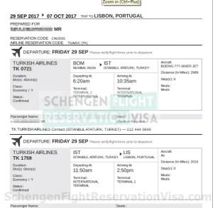 Flight Reservation OR Flight itinerary Sample