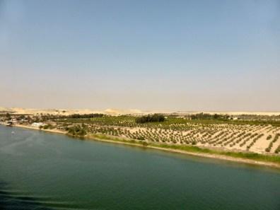 Suez - 00 (117)