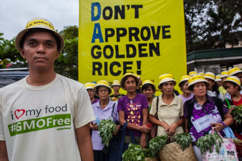 greenpeace_activity_golden rice.jpg