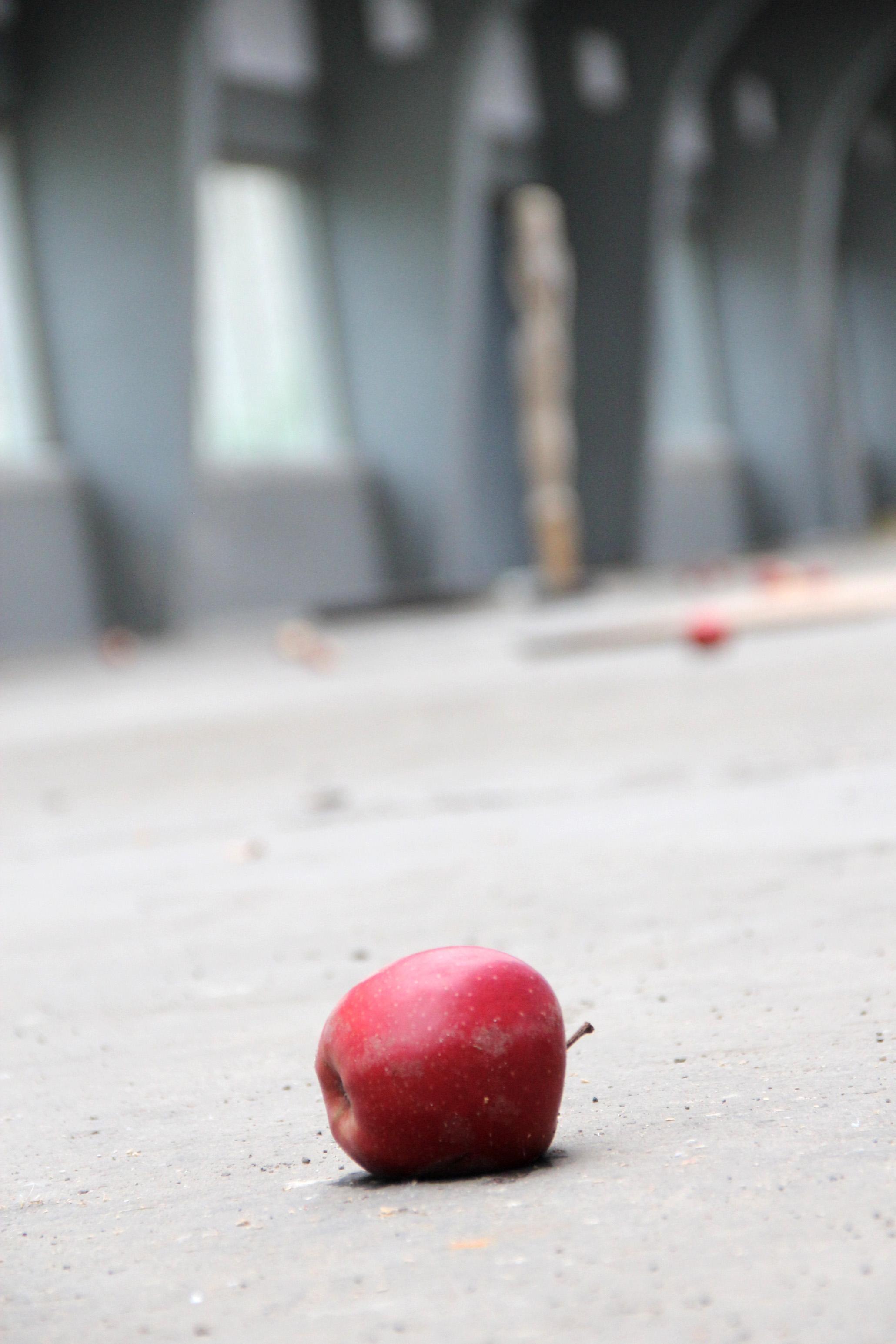 SCHALCHTEN | DISPLACED 2015 | disqualifiziert - vertrieben - ungehorsam | Franziska Gußmann | Image © Jana Plüschke