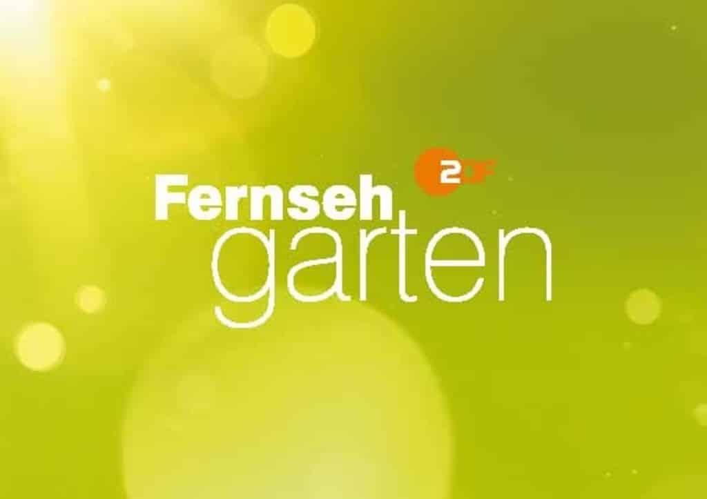 Zdf Fernsehgarten Programm 2021