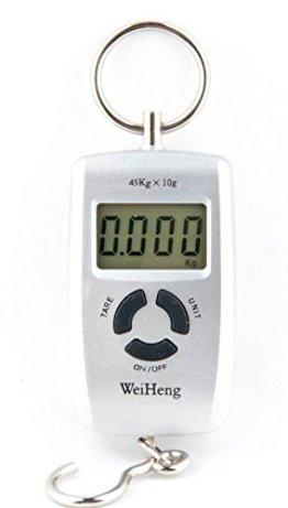 Quantum Abacus tragbare präzise Quantum Abacus Elektronische Reisewaage / Hängewaage / Gepäckwaage / Taschenwaage / Fischwaage 45kg/10g Genauigkeit schwarz, Mod. WH-45kg Grey DE -