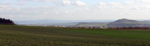 Wingertsbergwand (17)