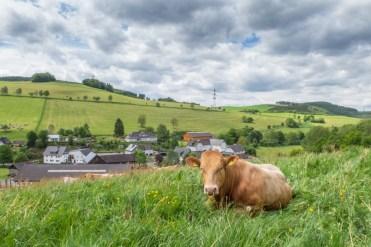 Sauerländer Dorfidylle in Oberhenneborn
