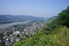 Leutesdorf und Rheinsteig (16)