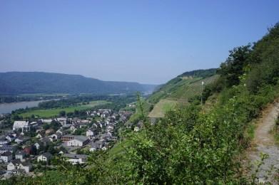 Leutesdorf und Rheinsteig (24)