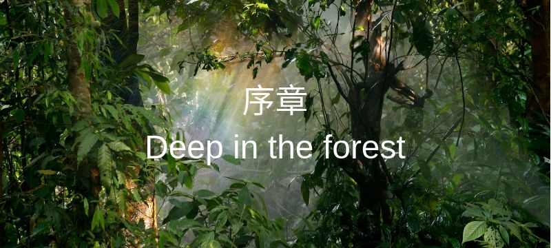 Chapter 0 - Deep in the forest