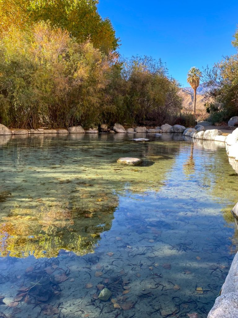 Wading Pool Whitewater Preserve