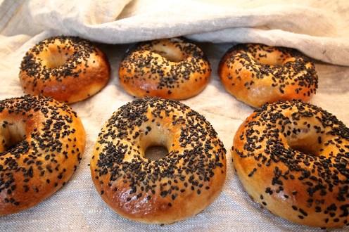 Die fertigen Bagels, am leckersten sind sie frisch!