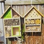 Insektenhotel einfach selber machen