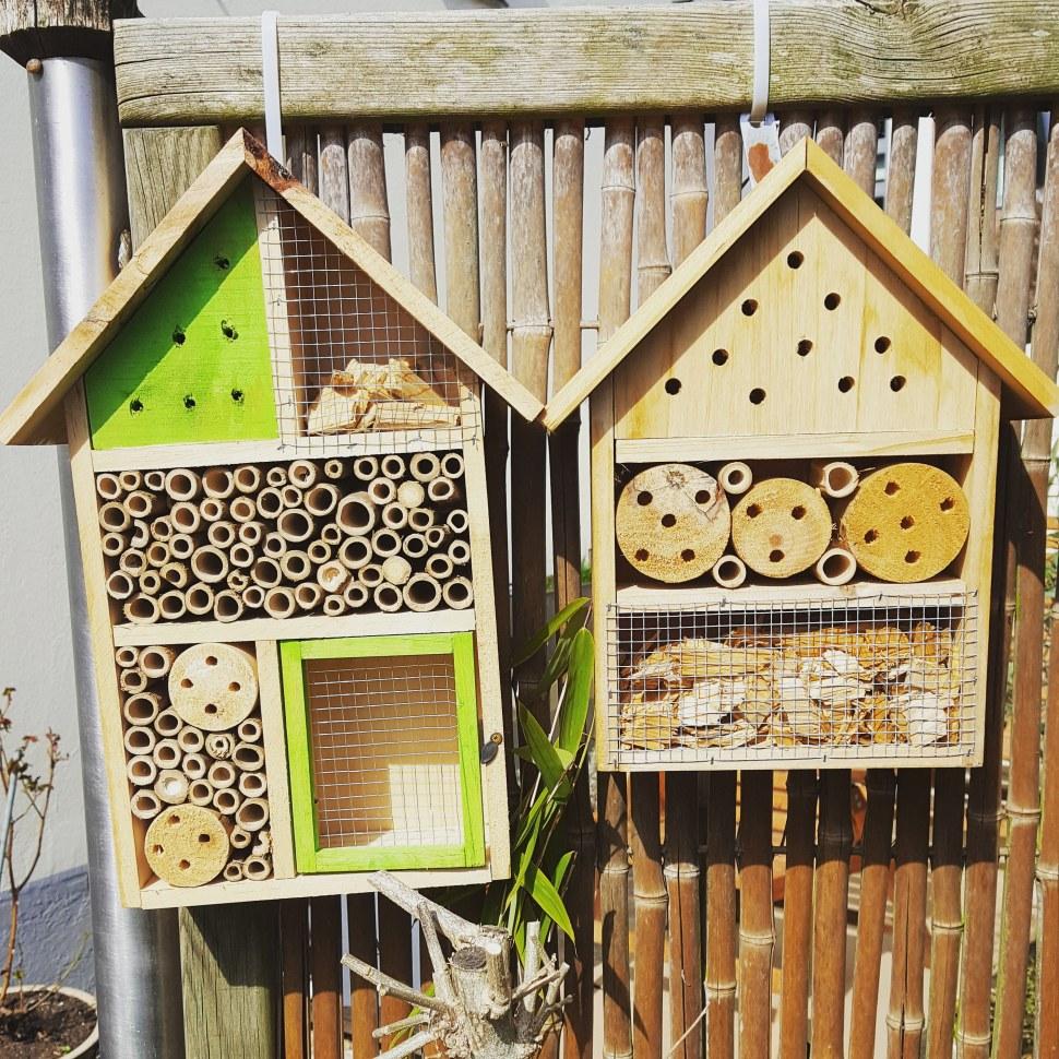 Das Insektenhotel darf ruhig einen sonnigen Platz haben.