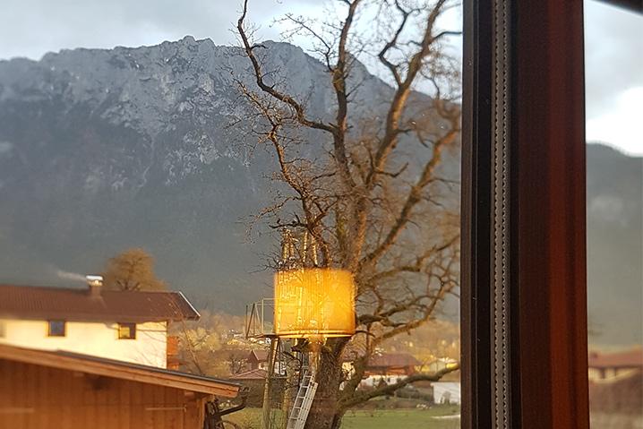 Ferienwohnung Tirol privat Almrausch Aussicht aus dem Fenster