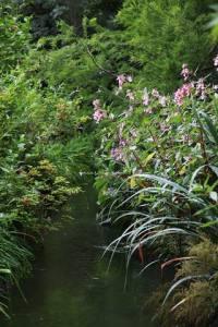 Parc de Claude Monet (11)