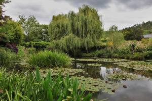 Parc de Claude Monet (12)