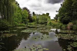 Parc de Claude Monet (15)