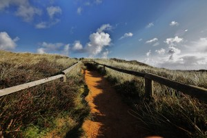 Morsum-Kliff-(5)