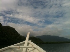 Mangrove Tour, Langkawi