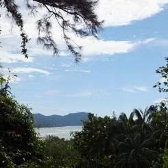 View from Shangri-La's Rasa Ria Nature Reserve - Orang Utan