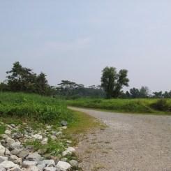 Pulau Ubin Ketam Quarry Trail Out