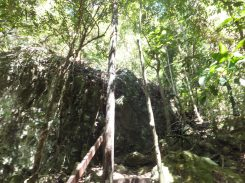 Explore Sabah Day 19: Bohey Dulang, Semporna - Cave like where I saw the snake