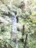Mount Kinabalu Carson Waterfall