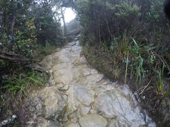 Climbing Mount Kinabalu Wet Uphill Slopes