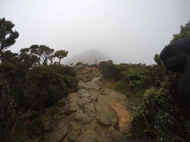 Climbing Mount Kinabalu Paths reaching to shelter