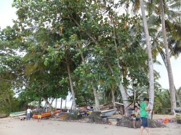 Local boats at Kinarut Beach