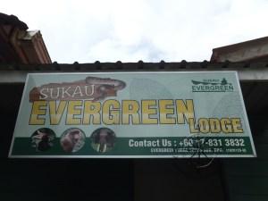 Sukau Evergreen Lodge Kinabatangan