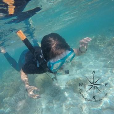 Enjoying Snorkeling around Sibuan Island, Semporna Island Hopping