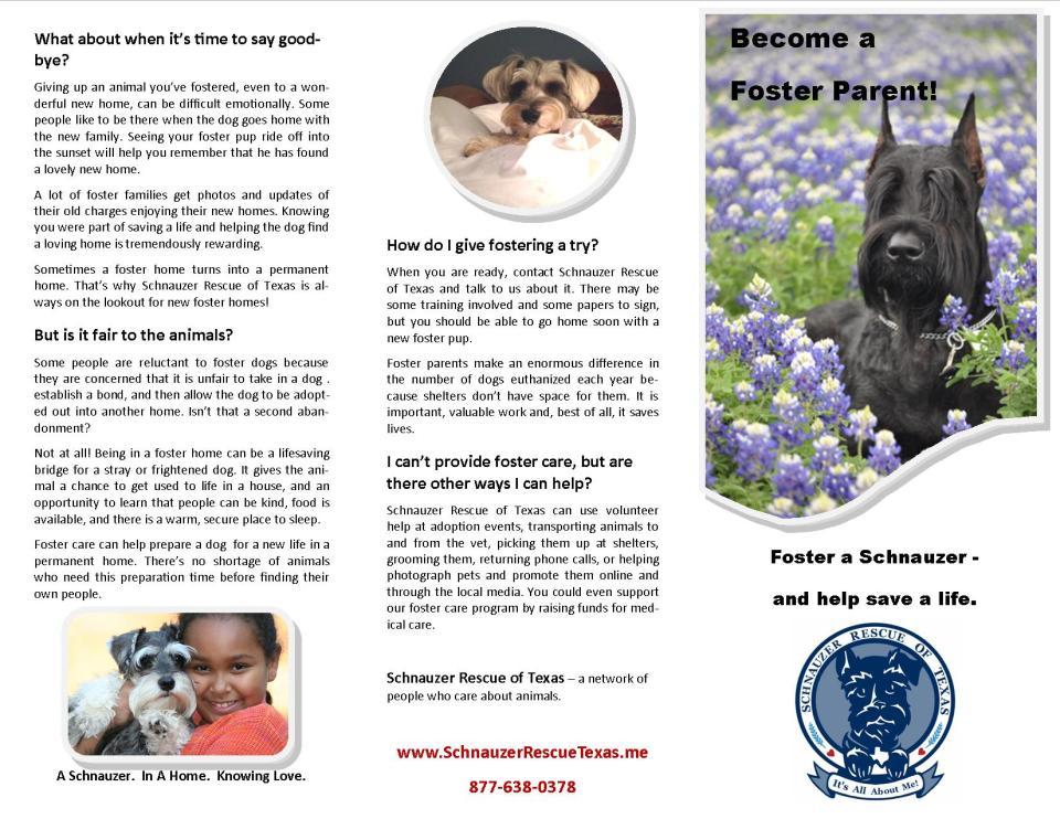 srt foster brochure final outside