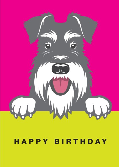 salt and pepper schnauzer birthday card on pink background