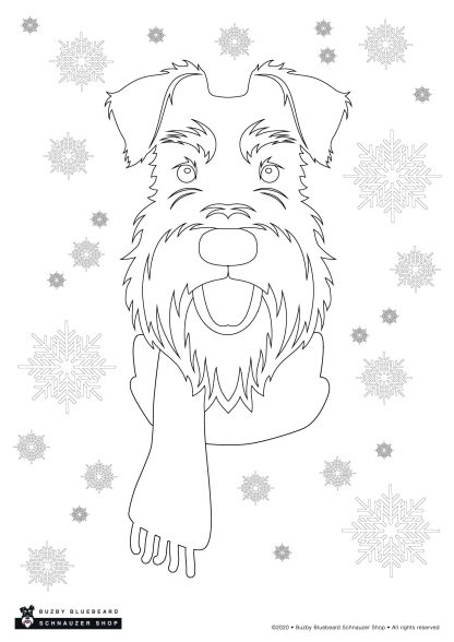 Christmas colouring pack - snow