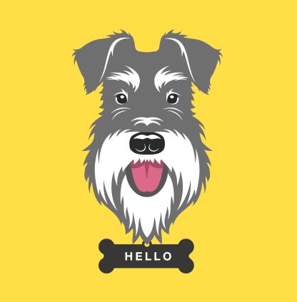 greetings-card-hello-salt-pepper-schnauzer