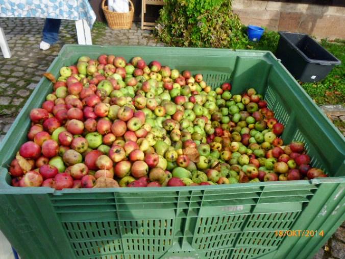 Apfelmarkt -18.10.14   (2e)