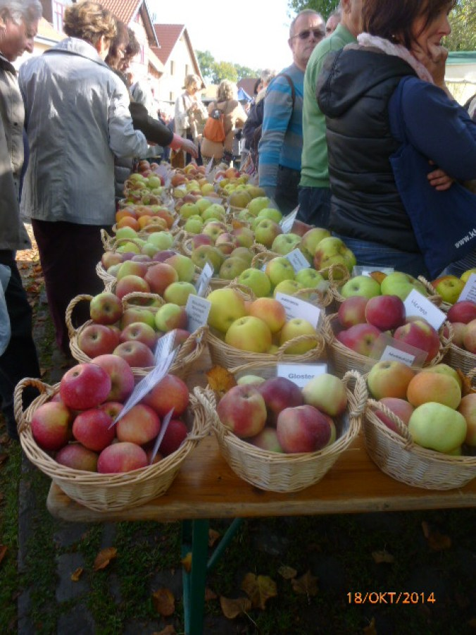 Apfelmarkt -18.10.14   (2f)