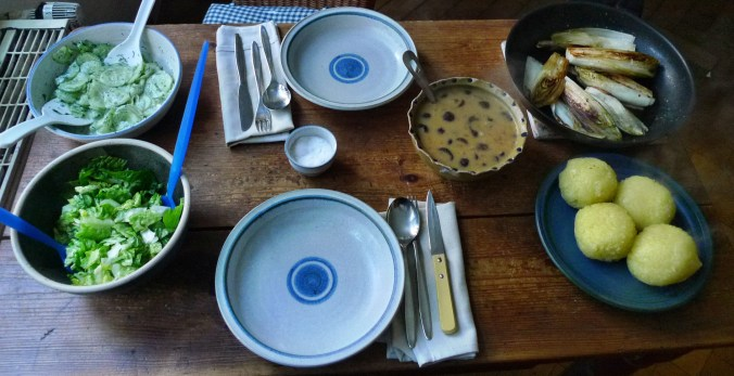 Klöße,Pilzsauce,Salate-8.2.15   (16)