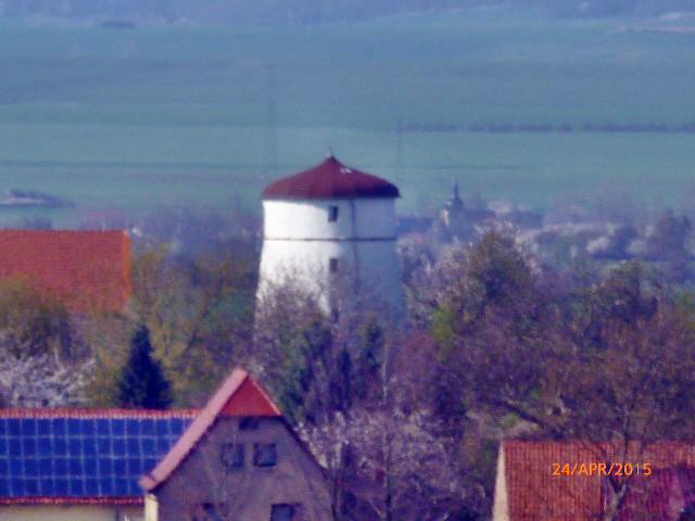 Walpurgishexe und Kirschblüte - 24.4.15   (33)