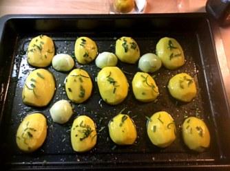 14.1.16 - Rosmarinkartoffeln,Champignon,Baba Ganousch,Avocado,Joghurtspeise (3)