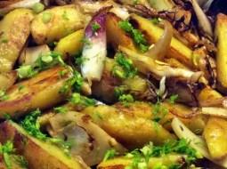 20.2.16 - Fenchel,Zwiebel,Kartoffel,Salat,vegan, (12)