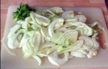 20.2.16 - Fenchel,Zwiebel,Kartoffel,Salat,vegan, (4)