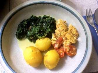 26.4.16 - Spinat,Rührei,Kartoffeln,vegetarisch (14)