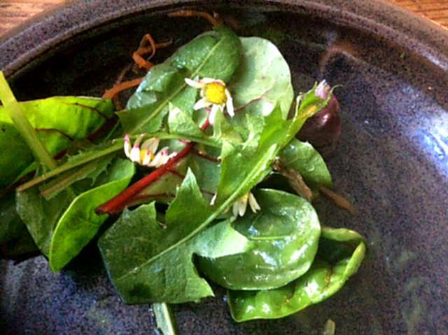 6.4.16 - Spinat Risotto,Salat,vegetarisch (20)