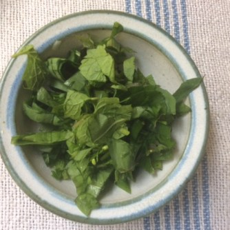 4.5.16 - Risotto,grüner Spargel,Apfelkompott (13)
